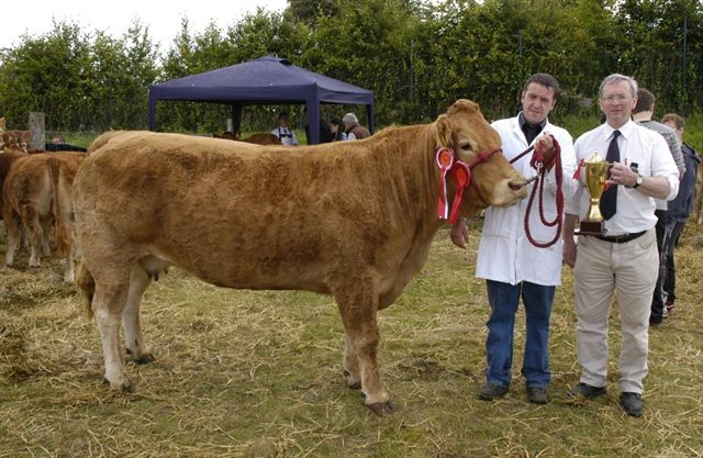 The 27th Annual Swinford Show will be held on Saturday 15th August 2015 in a wonderful new 30-acre venue on the Kiltimagh Road, just off the N5, by kind permission of the Heeran family. Visit Swinford.ie for more details.